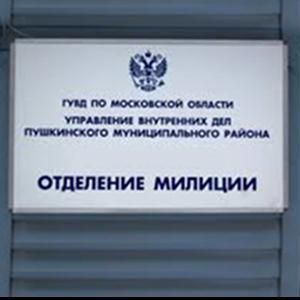 Отделения полиции Долматовского