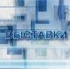 Выставки в Долматовском