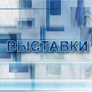 Выставки Долматовского